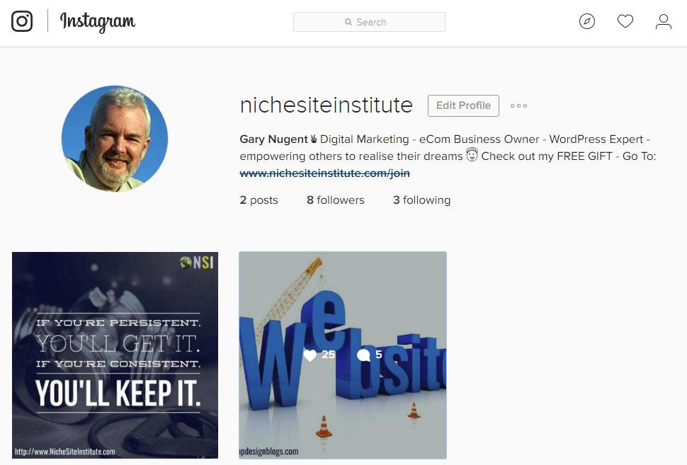 Niche Site Institute Instagram Page