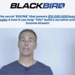 Blackbird - Selling On Amazon