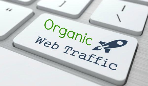 Organic Web Traffic